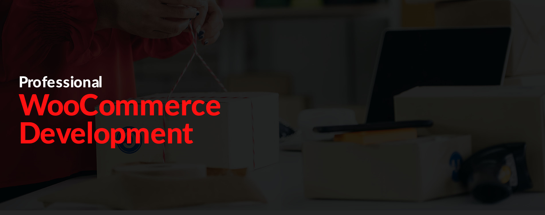 woocommerce service provider companies chicago